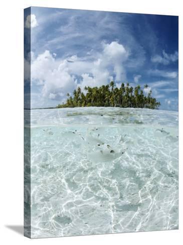 Rangiroa, Tuamotu Archipelago, French Polynesia, Pacific Islands, Pacific-Sergio Pitamitz-Stretched Canvas Print