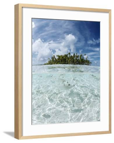 Rangiroa, Tuamotu Archipelago, French Polynesia, Pacific Islands, Pacific-Sergio Pitamitz-Framed Art Print