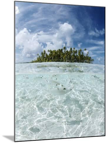 Rangiroa, Tuamotu Archipelago, French Polynesia, Pacific Islands, Pacific-Sergio Pitamitz-Mounted Photographic Print