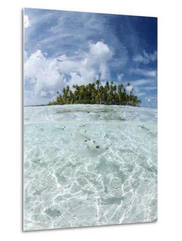 Rangiroa, Tuamotu Archipelago, French Polynesia, Pacific Islands, Pacific-Sergio Pitamitz-Metal Print