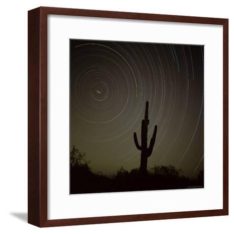 Star Trek Over Cacti, Tracing Stars as They Move Round North Star, Tucson, Arizona, USA-Tony Gervis-Framed Art Print