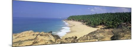Coconut Palms and Beach, Kovalam, Kerala State, India, Asia-Gavin Hellier-Mounted Photographic Print