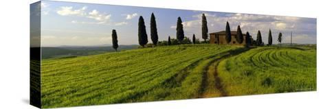 Farmhouse and Cypress Trees Near Pienza, Tuscany, Italy, Europe-Lee Frost-Stretched Canvas Print