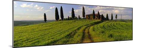 Farmhouse and Cypress Trees Near Pienza, Tuscany, Italy, Europe-Lee Frost-Mounted Photographic Print