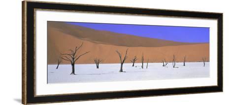 Panoramic View of Dead Trees and Orange Sand Dunes, Dead Vlei, Namib Desert, Namibia, Africa-Lee Frost-Framed Art Print