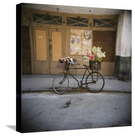 Bicycle with Flowers in Basket, Havana Centro, Havana, Cuba, West Indies, Central America-Lee Frost-Stretched Canvas Print