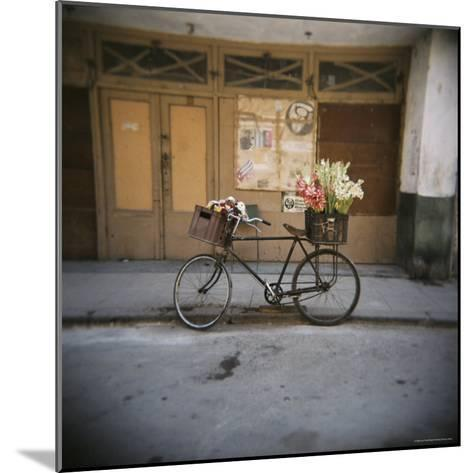 Bicycle with Flowers in Basket, Havana Centro, Havana, Cuba, West Indies, Central America-Lee Frost-Mounted Photographic Print