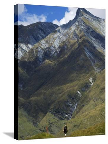 Hikers on the Rob Roy Glacier Hiking Track, New Zealand, Pacific-Christian Kober-Stretched Canvas Print