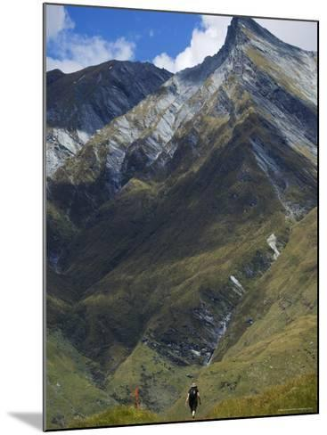 Hikers on the Rob Roy Glacier Hiking Track, New Zealand, Pacific-Christian Kober-Mounted Photographic Print