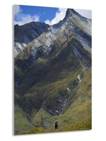 Hikers on the Rob Roy Glacier Hiking Track, New Zealand, Pacific-Christian Kober-Metal Print