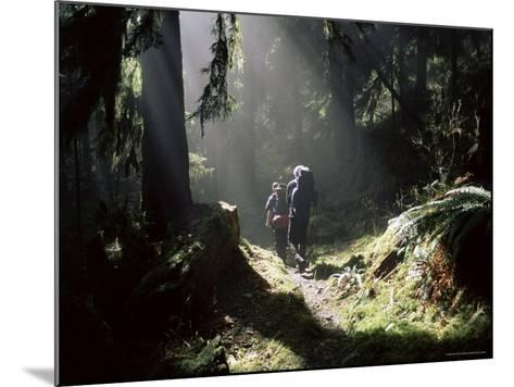 Backpackers in Steamy Light, Queets Vall, Olympic National Park, Washington State, USA-Aaron McCoy-Mounted Photographic Print