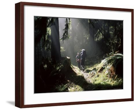 Backpackers in Steamy Light, Queets Vall, Olympic National Park, Washington State, USA-Aaron McCoy-Framed Art Print