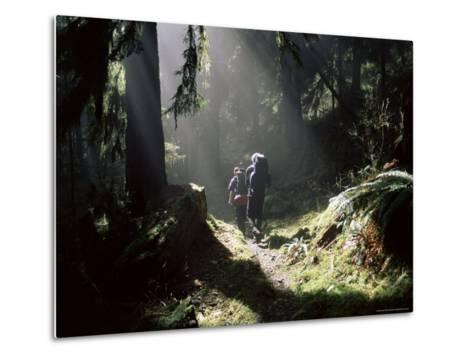 Backpackers in Steamy Light, Queets Vall, Olympic National Park, Washington State, USA-Aaron McCoy-Metal Print