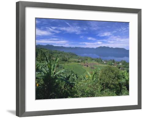 Rice Terraces on Eastern Shore of Crater Lake, Lake Maninjau, West Sumatra, Sumatra, Indonesia-Robert Francis-Framed Art Print