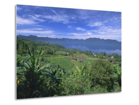 Rice Terraces on Eastern Shore of Crater Lake, Lake Maninjau, West Sumatra, Sumatra, Indonesia-Robert Francis-Metal Print