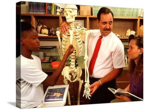 Students with Teacher Examining Skeleton in 7th Grade Science Class-Bill Bachmann-Stretched Canvas Print