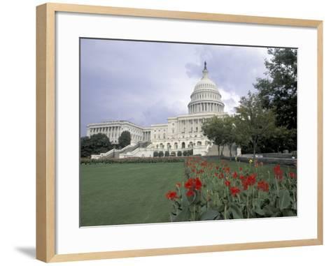 Capitol Building and Colorful Flowers, Washington DC, USA-Bill Bachmann-Framed Art Print