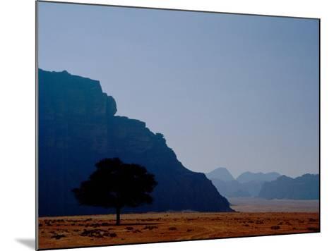 Lone Tree in Desolate Red Desert of Wadi Rum, Jordan-Cindy Miller Hopkins-Mounted Photographic Print