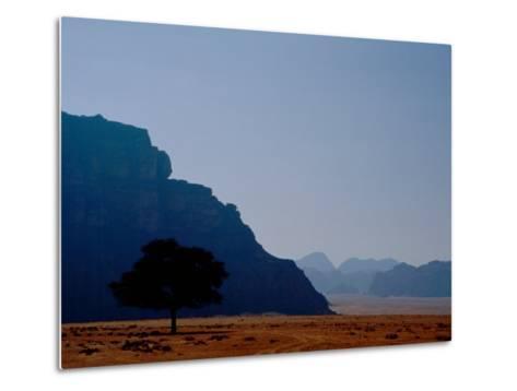 Lone Tree in Desolate Red Desert of Wadi Rum, Jordan-Cindy Miller Hopkins-Metal Print
