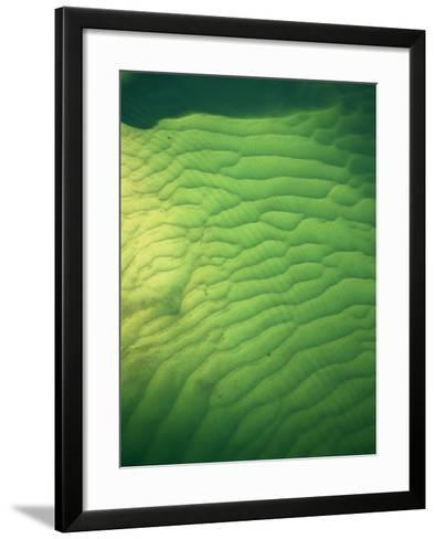 Underwater sand patterns, The Broadwater, Gold Coast, Australia-David Wall-Framed Art Print