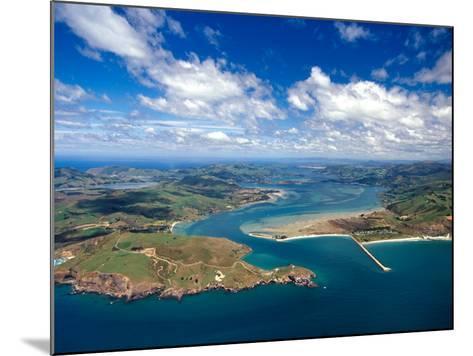 Taiaroa Head, Otago Peninsula, Aramoana and Entrance to Otago Harbor, near Dunedin, New Zealand-David Wall-Mounted Photographic Print