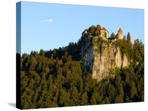 Lake Bled, Bled Castle on Hilltop, Bled, Slovenia-Lisa S^ Engelbrecht-Stretched Canvas Print