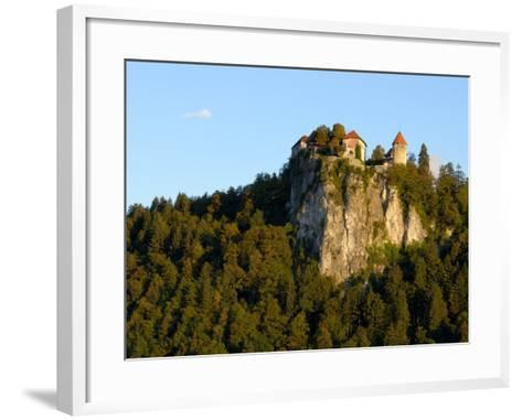 Lake Bled, Bled Castle on Hilltop, Bled, Slovenia-Lisa S^ Engelbrecht-Framed Art Print