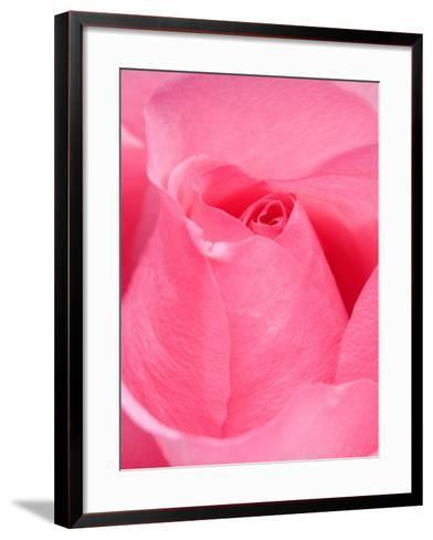 Rose-Jamie & Judy Wild-Framed Art Print