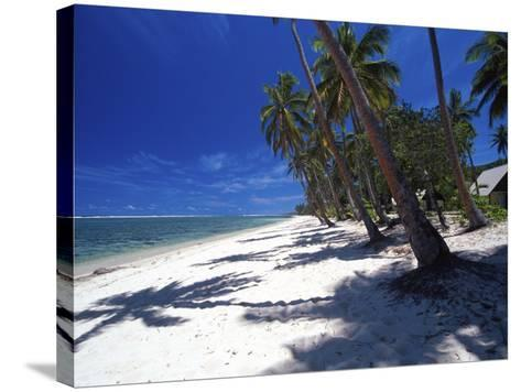 Tambua Sands Resort, Palm Trees and Shadows on Beach, Coral Coast, Melanesia-David Wall-Stretched Canvas Print