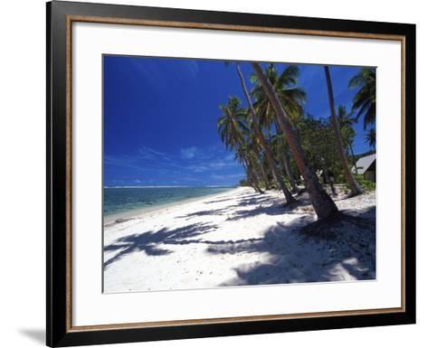 Tambua Sands Resort, Palm Trees and Shadows on Beach, Coral Coast, Melanesia-David Wall-Framed Art Print