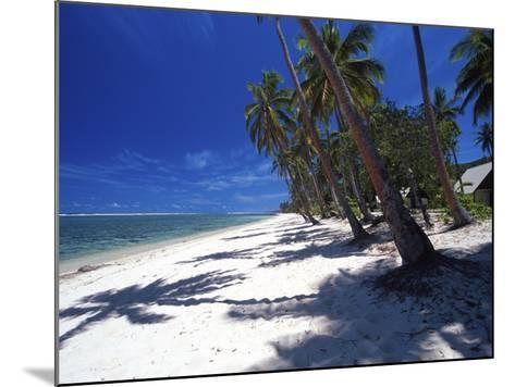 Tambua Sands Resort, Palm Trees and Shadows on Beach, Coral Coast, Melanesia-David Wall-Mounted Photographic Print