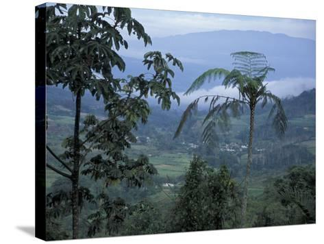 Overlooking the Lush Turrialba Area, Rancho Naturalista, Costa Rica-Cindy Miller Hopkins-Stretched Canvas Print
