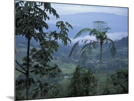 Overlooking the Lush Turrialba Area, Rancho Naturalista, Costa Rica-Cindy Miller Hopkins-Mounted Photographic Print