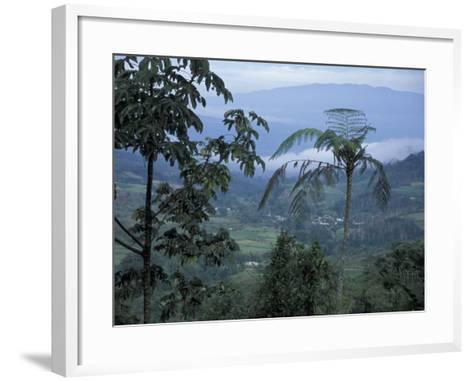 Overlooking the Lush Turrialba Area, Rancho Naturalista, Costa Rica-Cindy Miller Hopkins-Framed Art Print