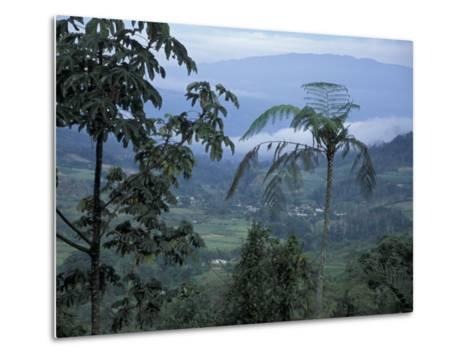 Overlooking the Lush Turrialba Area, Rancho Naturalista, Costa Rica-Cindy Miller Hopkins-Metal Print