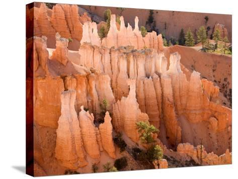Queens Garden, Bryce Canyon National Park, Utah, USA-Jamie & Judy Wild-Stretched Canvas Print
