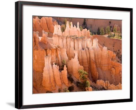 Queens Garden, Bryce Canyon National Park, Utah, USA-Jamie & Judy Wild-Framed Art Print