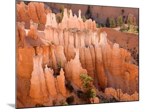 Queens Garden, Bryce Canyon National Park, Utah, USA-Jamie & Judy Wild-Mounted Photographic Print