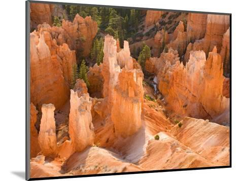Hoodoos in Bryce Canyon from Inspiration Point, Bryce Canyon National Park, Utah, USA-Jamie & Judy Wild-Mounted Photographic Print