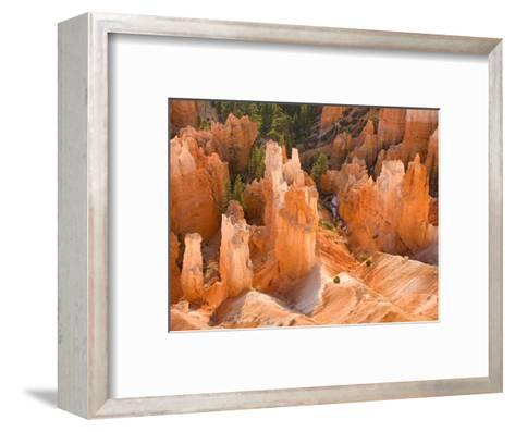 Hoodoos in Bryce Canyon from Inspiration Point, Bryce Canyon National Park, Utah, USA-Jamie & Judy Wild-Framed Art Print