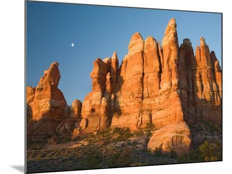 Moon Setting over Rock Pinnacles at Chesler Park, The Needles, Canyonlands National Park, Utah, USA-Jamie & Judy Wild-Mounted Photographic Print