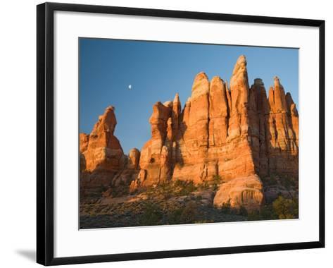 Moon Setting over Rock Pinnacles at Chesler Park, The Needles, Canyonlands National Park, Utah, USA-Jamie & Judy Wild-Framed Art Print