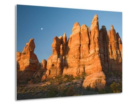Moon Setting over Rock Pinnacles at Chesler Park, The Needles, Canyonlands National Park, Utah, USA-Jamie & Judy Wild-Metal Print
