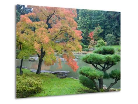 Autumn Color at the Japanese Garden, Washington Park Arboretum, Seattle, Washington, USA-Jamie & Judy Wild-Metal Print