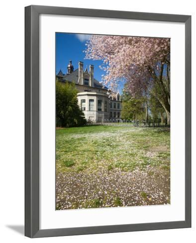 Denny Hall with Blooming Cherry Trees, University of Washington, Seattle, Washington, USA-Jamie & Judy Wild-Framed Art Print