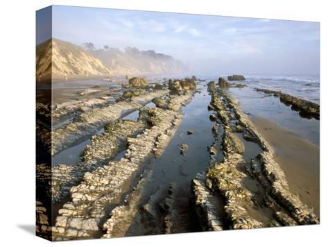 Henry's Beach, Santa Barbara, California, USA-Savanah Stewart-Stretched Canvas Print