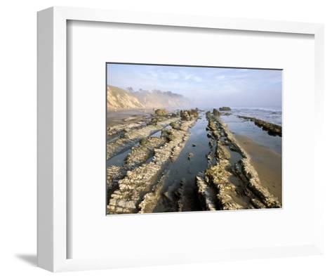 Henry's Beach, Santa Barbara, California, USA-Savanah Stewart-Framed Art Print