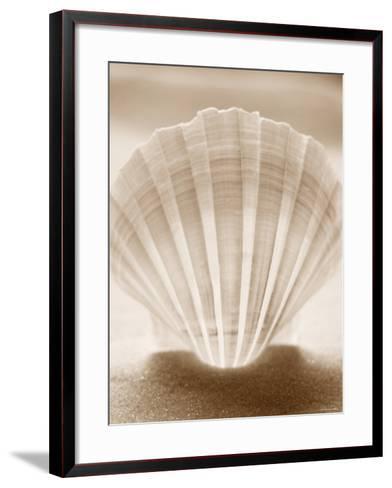Luminescent Irish Deep Seashell--Framed Art Print