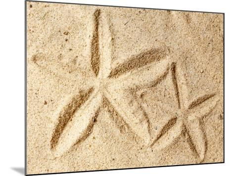 Starfish Imprints--Mounted Photo