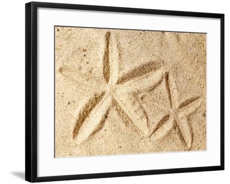 Starfish Imprints--Framed Art Print